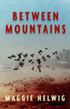 cover of Between Mountains (Knopf 2004)